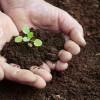 Agricoltura motore del paesaggio – Le molte dimensioni dell'attività agricola