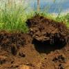 L'uomo erode il suolo 100 volte più velocemente della natura