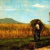Le imprese agricole e il sistema bancario