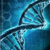 Incontri con il DNA