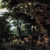 Il bosco, una risorsa che va valorizzata
