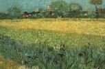 """Sintesi della Giornata di studio: """"Le molteplici vie alla sostenibilità in agricoltura"""""""