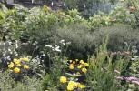 Orti giardino e valorizzazione di colture tradizionali in Carnia, luoghi da riscoprire