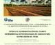 """Presentato il """"Progetto Agricoltura di precisione nella zona di frontiera Repubblica Dominicana-Haiti"""""""