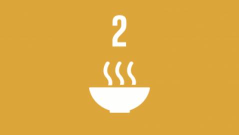 """La FAO lancia la """"Food Coalition"""" per migliorare l'accesso al cibo e promuovere sistemi agroalimentari sostenibili"""