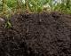 Il protocollo FAO per monitorare la gestione sostenibile del suolo