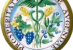 Rinnovato il Protocollo d'intesa FIDAF-Accademia dei Georgofili