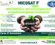 """7 aprile 2021 – Corso di formazione online """"MICORRIZE e altri microrganismi: le biotecnologie da conoscere"""""""