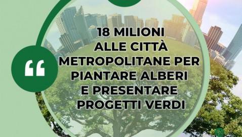 Il Bando per la forestazione urbana 2021 è un buon inizio in attesa della Strategia Forestale