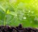 South Up!, la call Agritech e Agroenergia per sostenibilità e sviluppo del Sud Italia