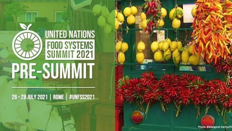 Pre-Vertice delle Nazioni Unite sui Sistemi Alimentari – Roma, 26-28 luglio 2021