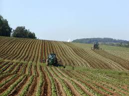 suolo agricolo