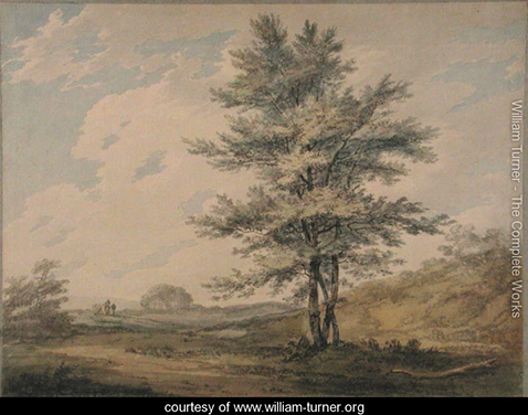 Landscape with Trees and Figures, William Turner