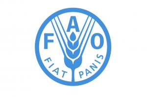 logo_fao
