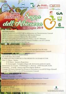 manifesto-sagra-albicocca-2019