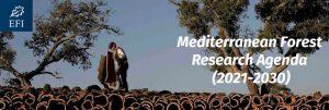 banner-mediterranean-forest-research-agenda1