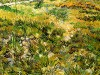meadow-in-the-garden-of-saint-paul-hospital-vincent-van-gogh-