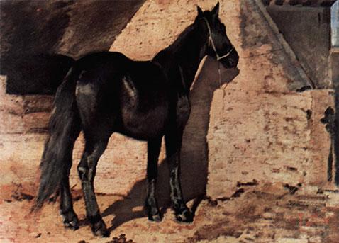 cavallo-nero-al-sole-gfattori