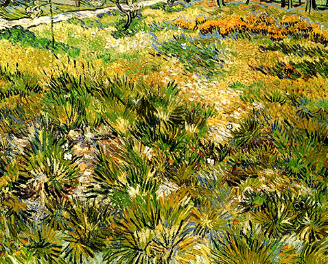 meadow-in-the-garden-of-saint-paul-hospital-vincent-van-gogh-